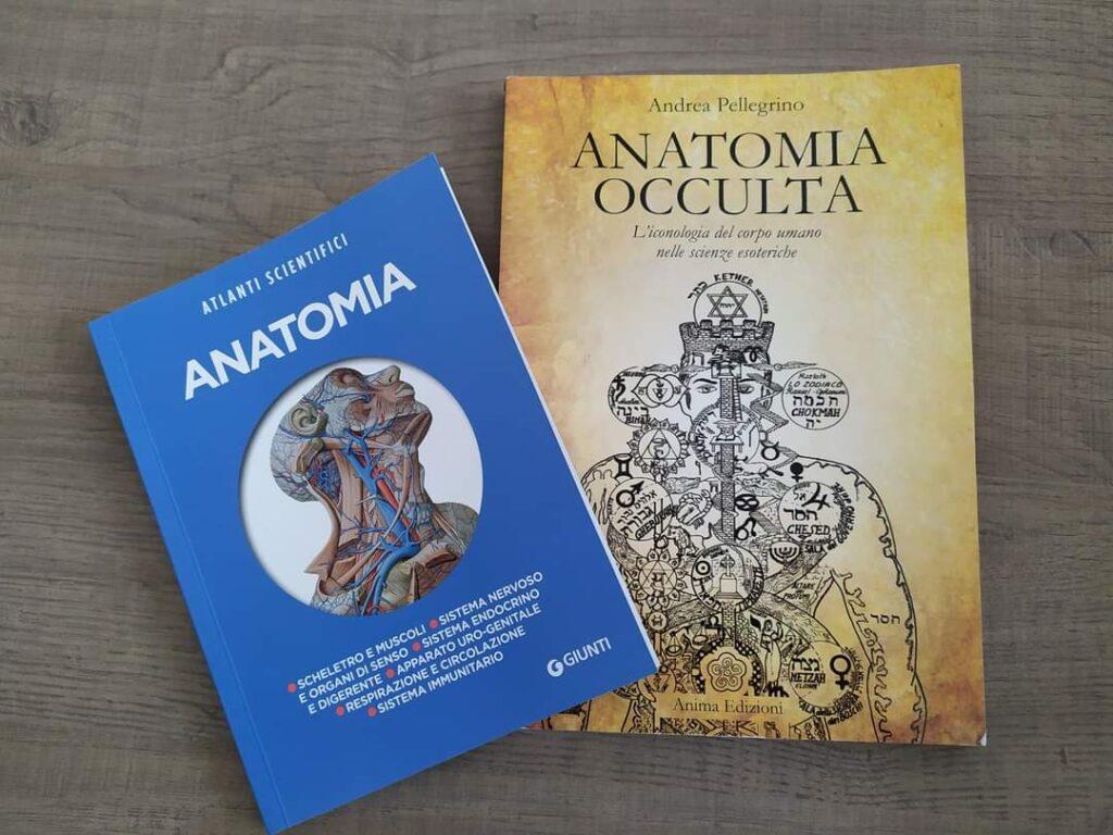 anatomia classica e occulta