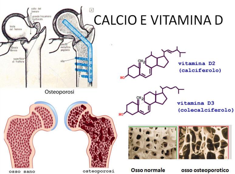calcio vitamina d