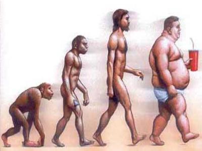 evoluzione uomo