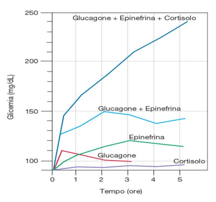 glicemia ormoni