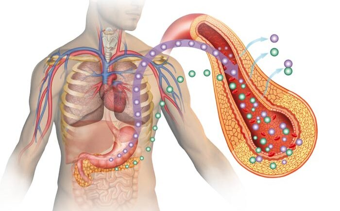 glicemia insulina