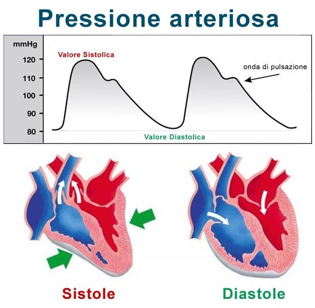 PRESSIONE ARTERIOSA MASSIMA E MINIMA
